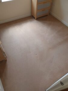 Bedroom - AFTER (1) - Carpet Cleaning