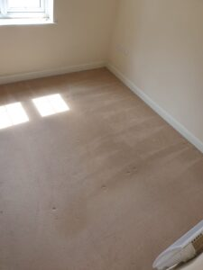 Bedroom - AFTER (2) - Carpet Cleaning