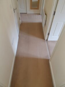 Hallway - DURING - Carpet Cleaning