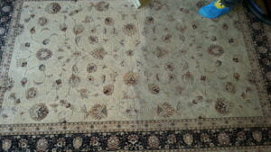 Rug Cleaning - During (3)